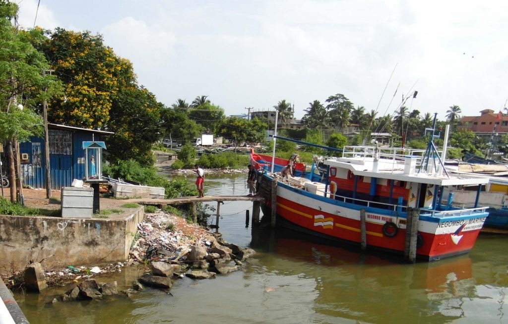 Need of an action for heavy metal contamination in Negombo lagoon